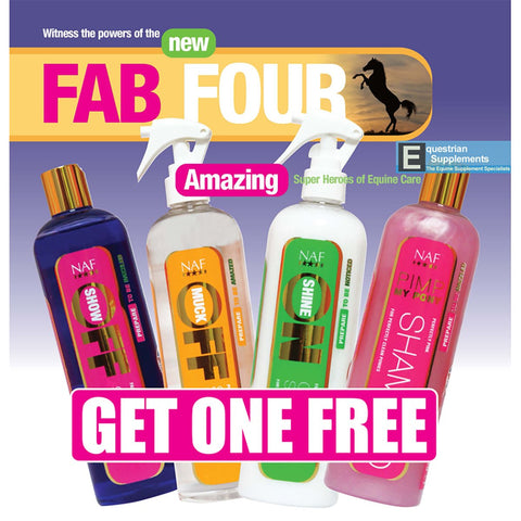 Fab Four - Shampoos Stain Remover Grooming Spray - NAF