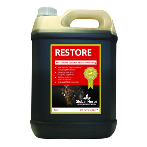 Image of Restore - Detoxifier (5Ltr) - Global Herbs