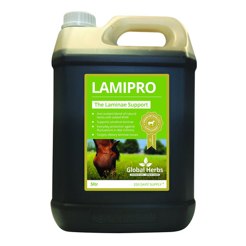 LamiPro (5Ltr) - Global Herbs