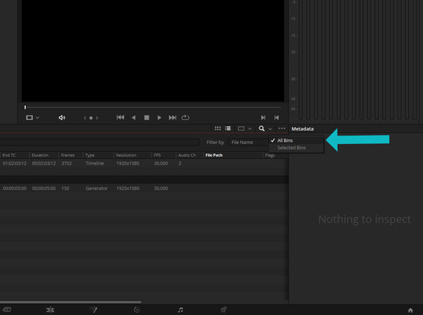 Magnifying glass all bins in DaVinci Resolve
