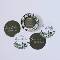 Evergreen & Olive Reversible Milestone Cards