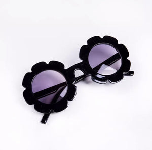 Black Sunflower Sunnys