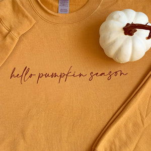 Hello Pumpkin Season | Muted Orange Sweater