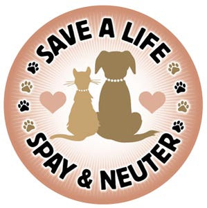 Medication to sterilise 5 animals - Virtual gift