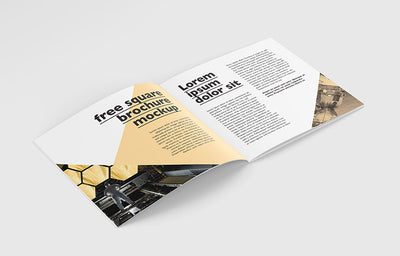 Great Collection of Clean Square Brochure Mockups 5 Angles and VIews Included