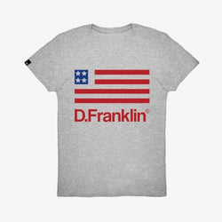 USA T-Shirt Grey