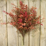 "Country Primitive Red Baby's Grass Bush 21"" - BJS Country Charm"