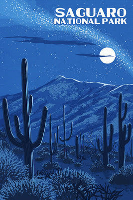 Arizona - Saguaro National Park - Night Sky