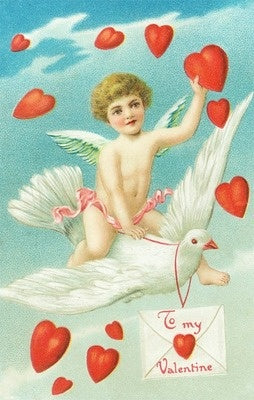 Valentine - Angel on Dove