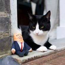 Load image into Gallery viewer, Donald cat toy