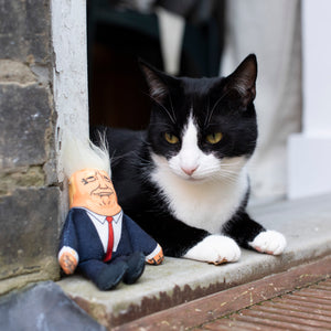Donald cat toy