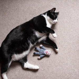 Nigel cat toy