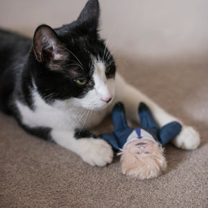 Boris cat toy