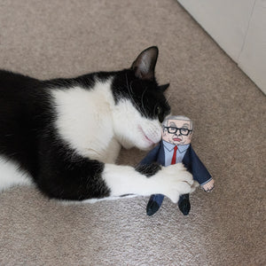 Michael cat toy