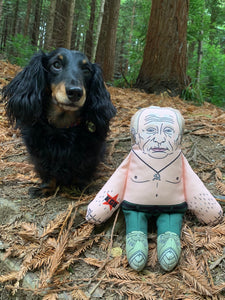 Vladimir Putin dog toy in forest with dog