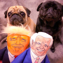 Load image into Gallery viewer, Joe biden and Donald Trump parody dog toys with two pug dogs