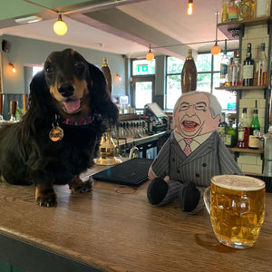 Sausage dog enjoying a pint in the local pub with a parody Nigel Farage dog toy