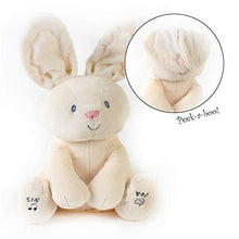 Load image into Gallery viewer, Personalized Peek A Boo Plush Toy