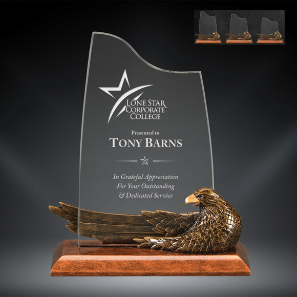 GreyStone Resin & Acrylic Eagle Award with stretched out Wing | 3 SIZES
