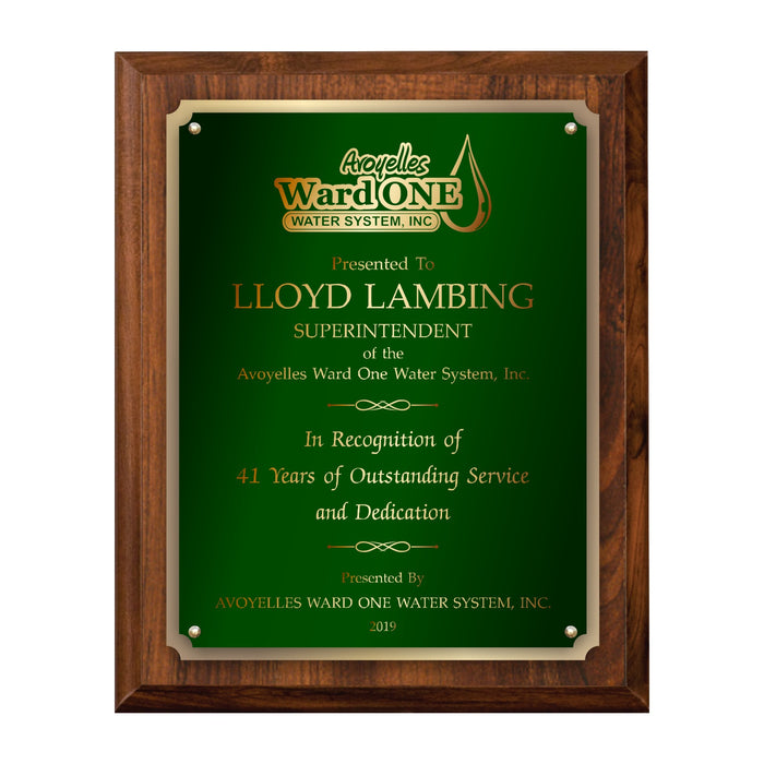 LA Trophies - Large Size Plaques with Solid Color Plate with Gold Accent and GOLD Engraving - 9x12, 10.5x13 | 5 PLATE COLORS