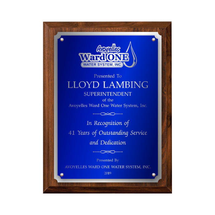 LA Trophies - Large Size Plaques with Solid Color Plate with Silver Accent and SILVER Engraving - 9x12, 10.5x13 | 5 PLATE COLORS