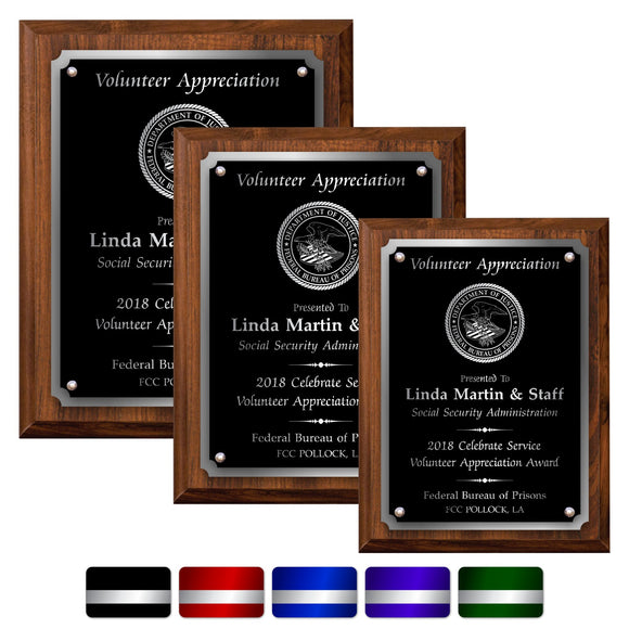 LA Trophies - Medium Size Plaques with Solid Color Plate with Silver Accent and SILVER Engraving - 6x8, 7x9, 8x10 | 5 PLATE COLORS