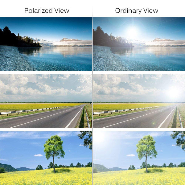 polarized vs non-polarized sunglasses difference