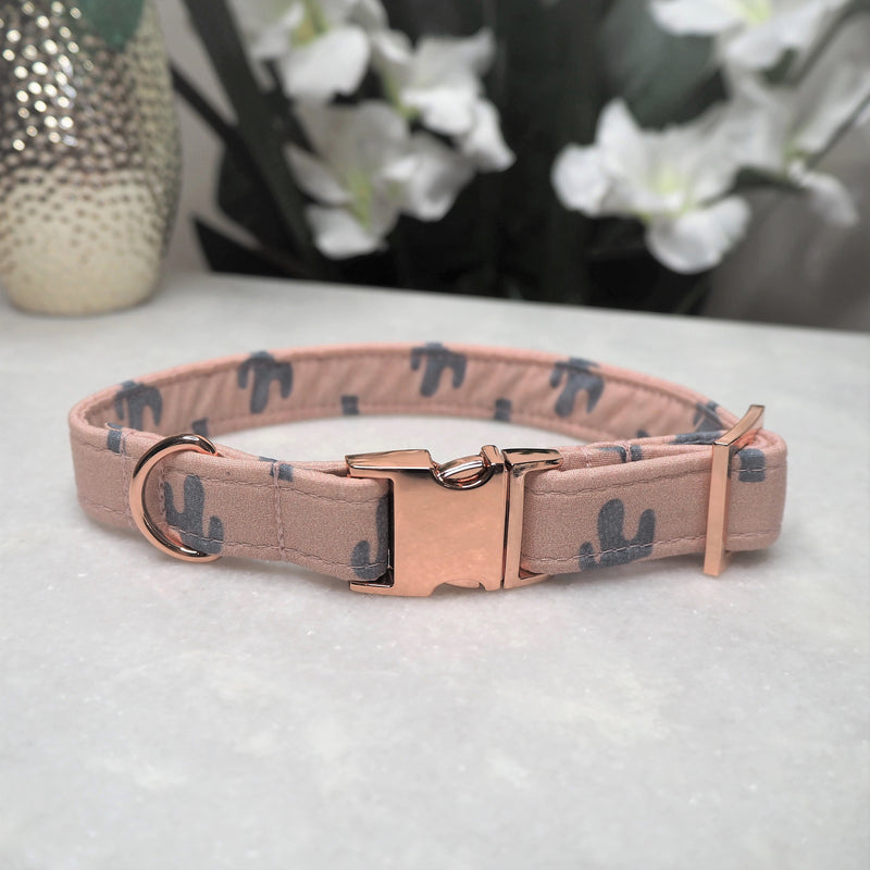 'Cactus' Dog Collar