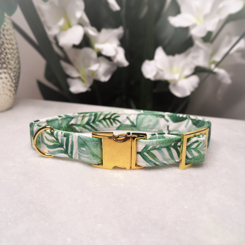 'Tropical' Dog Collar