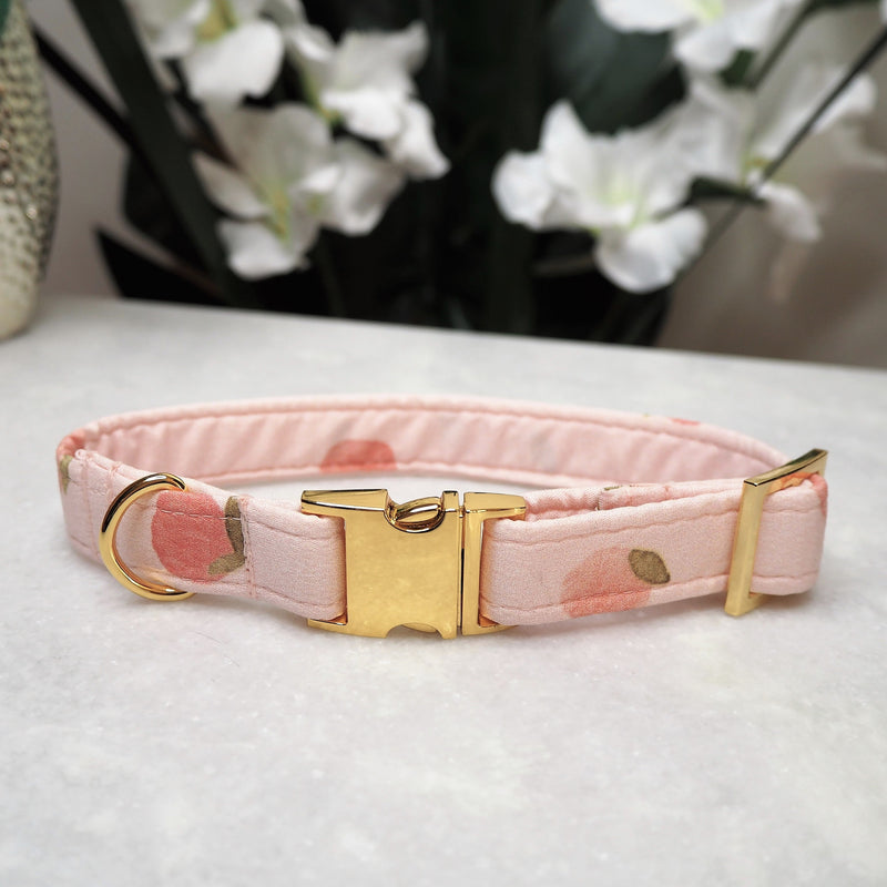 'Peaches' Dog Collar