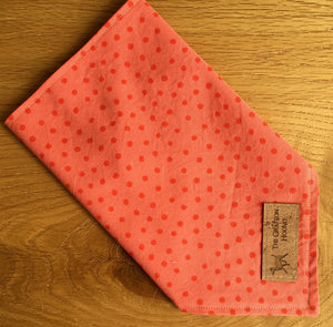 'Feeling Peachy' Dog Bandana