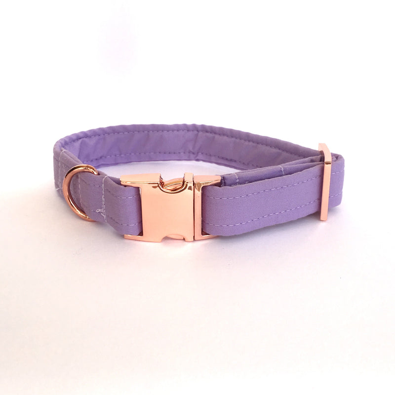 lavender purple dog collar with rose gold hardware