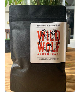 WILD WOLF Apothecary Marysia's Antiviral  Support