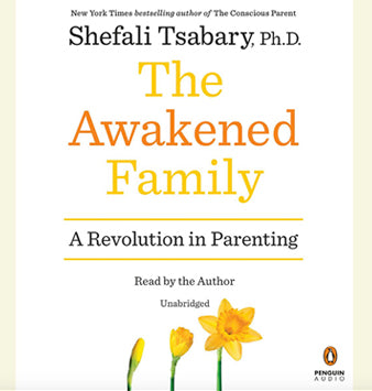 The Awakened Family (Audiobook)