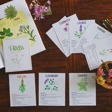 Load image into Gallery viewer, Medicinal Plants and Herbs- Fact Cards