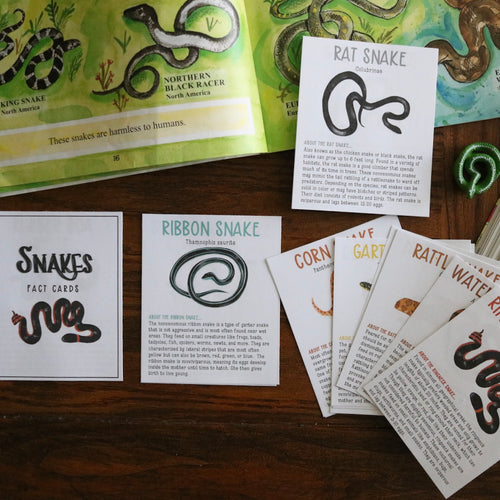 Snakes- Fact Cards