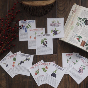 Wild Berries- Fact Cards