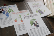 Load image into Gallery viewer, Wild Berries- Fact Cards