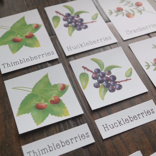 Wild Berries- Mini Cards