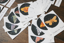Load image into Gallery viewer, Moths- Mini Cards