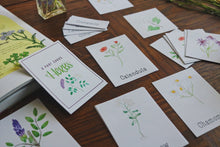 Load image into Gallery viewer, Medicinal Plants and Herbs- Mini Cards