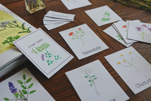 Medicinal Plants and Herbs- Mini Cards