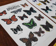 Load image into Gallery viewer, Butterflies- Art Posters