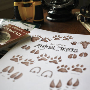 Animal Tracks- Art Posters