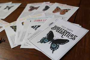 Butterflies- Fact Cards