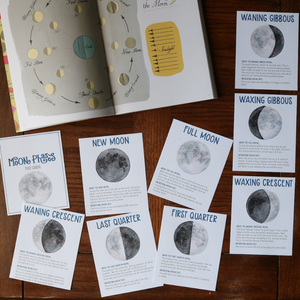 Moon Phases- Fact Cards