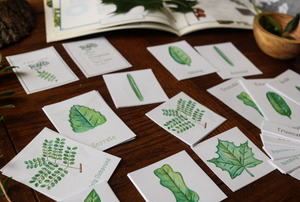 Leaves- Mini Cards