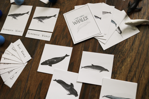 Whales- Mini Cards