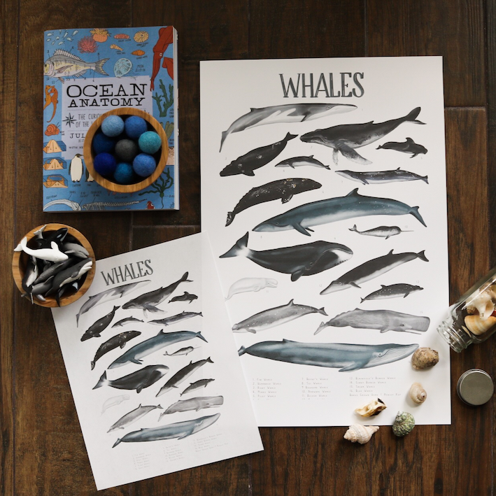 Whales- Art Posters