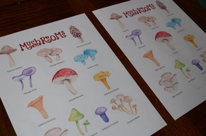 Mushrooms Art Posters